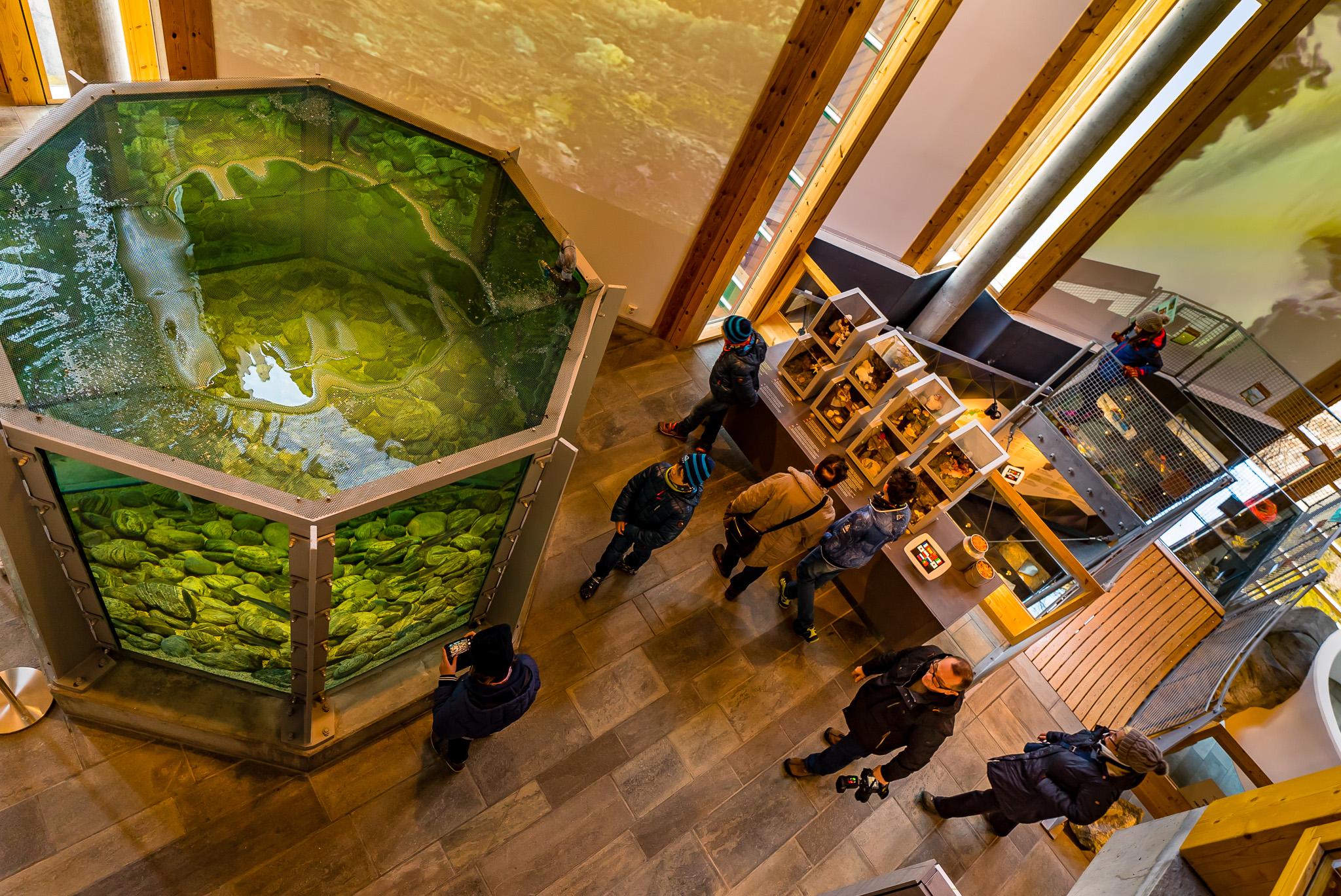 Norsk Natursenter - Utstilling